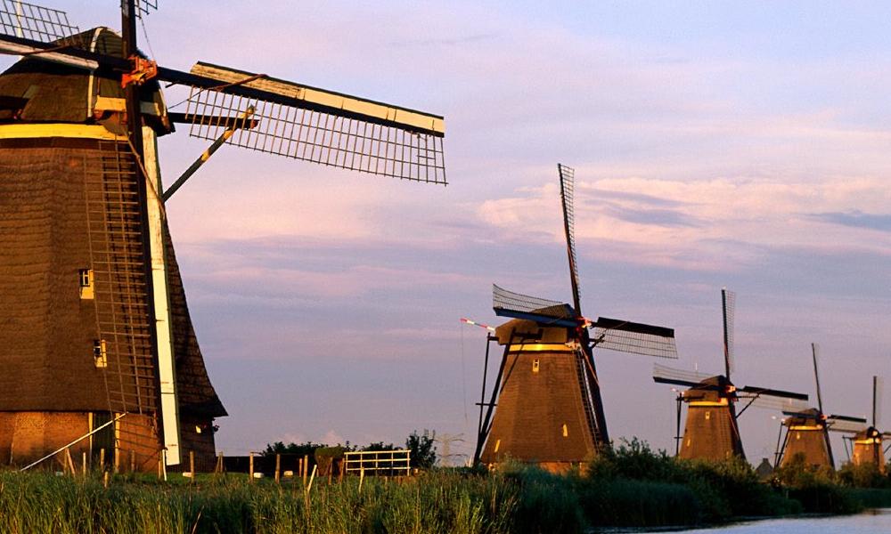 Holland amazing race